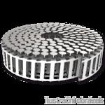 Páskované hřebíky v plastovém svitku 2,5 x 25 mm konvexní nerez A2