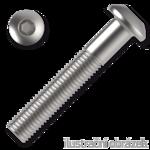 Šroub s půlkulatou hlavou, imbus M5x30 ZB ISO 7380-1 10.9